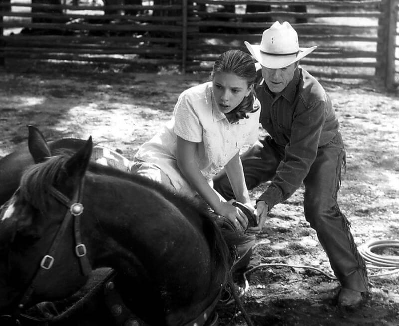El hombre que susurraba a los caballos.