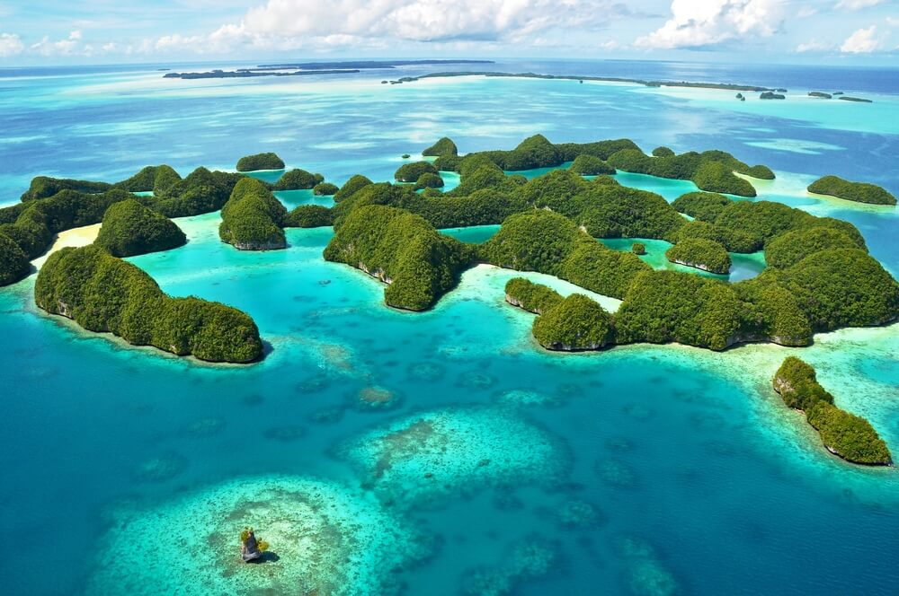 La extinción de la fauna en las islas del mundo