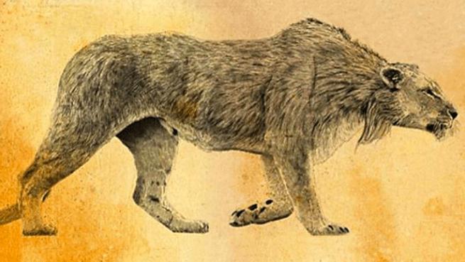 Fauna extinta: el león de las cavernas