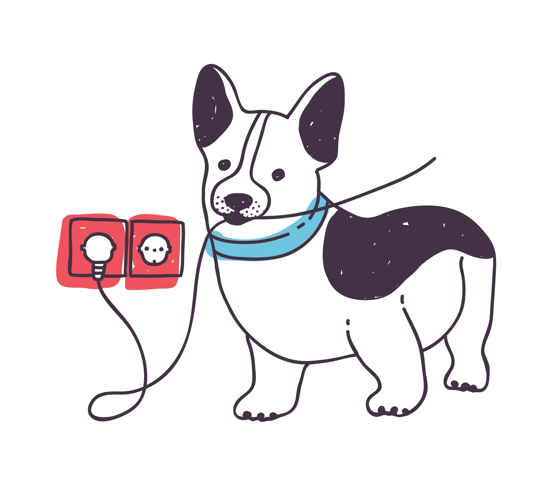 Perro muerde cable