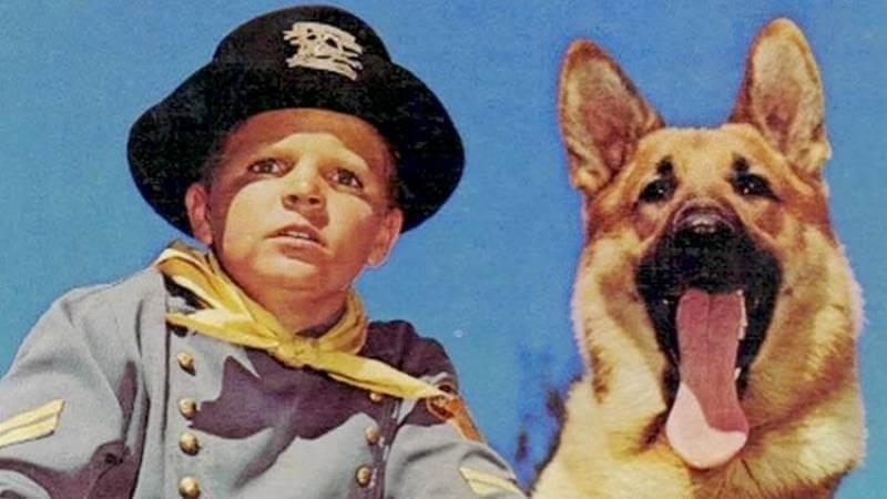 Antiguas series de TV protagonizadas por animales