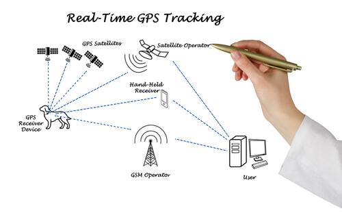 Cómo funciona el GPS para perros
