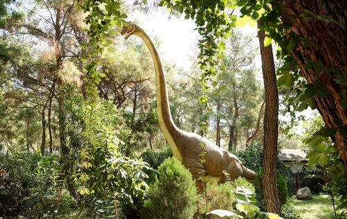 Dinosaurios herbívoros: Brachiosaurus