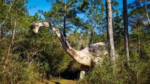 Dinosaurios herbívoros: Brontosaurus