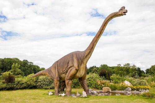 El Diplodocus es uno de los dinosaurios herbívoros