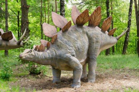 Tipos De Dinosaurios Herbivoros Mis Animales Animales herbívoros, omnívoros y carnívoros. tipos de dinosaurios herbivoros mis