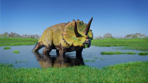 Dinosaurios herbívoros: tricerátops