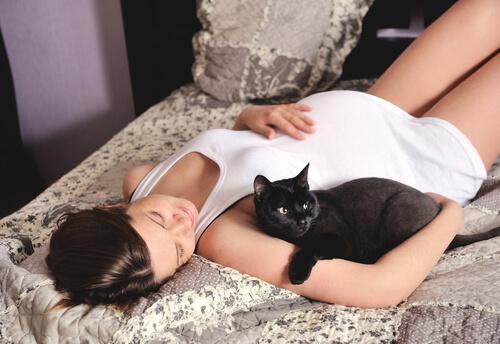 Наличие кошки влияет на вас, если вы беременны?