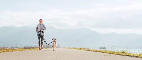 Преимущества бега с собакой