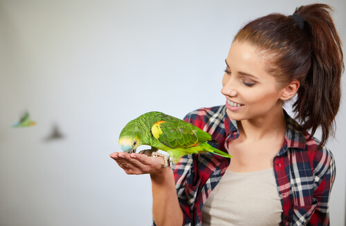 Las sorprendentes capacidades cognitivas de los loros