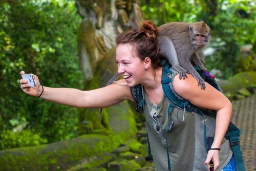 Los selfies con macacos, ¿qué hay detrás?
