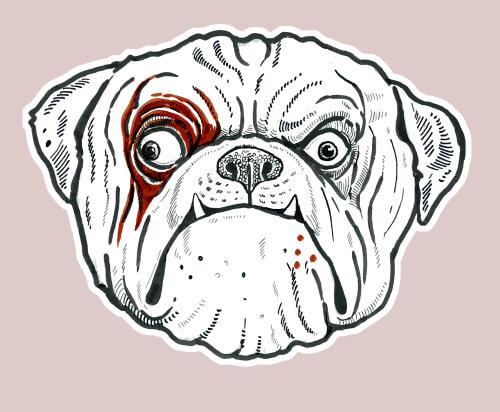 Cómo dibujar a tu perro