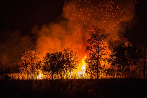 Incendio Australia.
