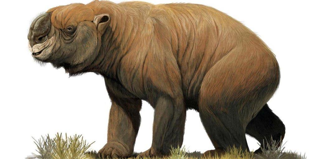 La megafauna extinta de Australia