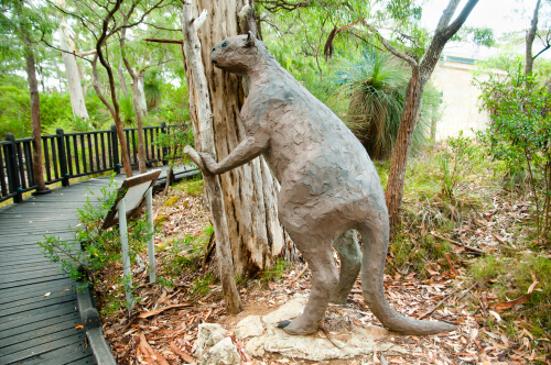 Megafauna: procoptodon