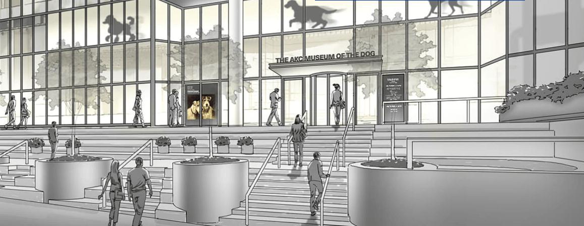 El Museo Del Perro De Nueva York Mis Animales