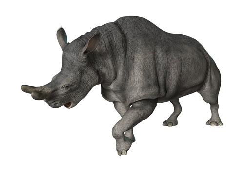 Rinoceronte de trueno