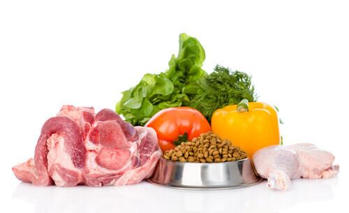 Alimentos orgánicos para mascotas