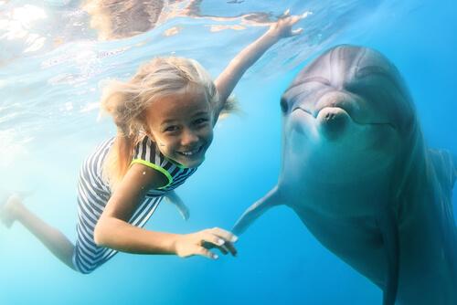 Beneficios de los delfines en los niños
