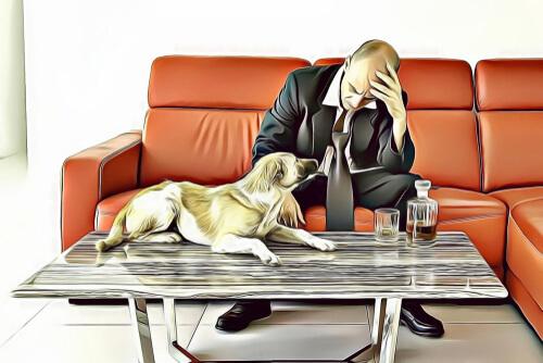 Custodia compartida de perros