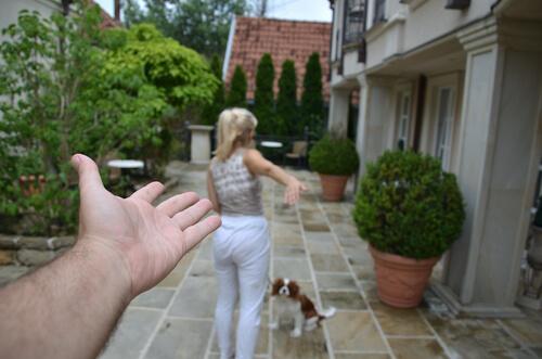 Divorcio y custodia del perro