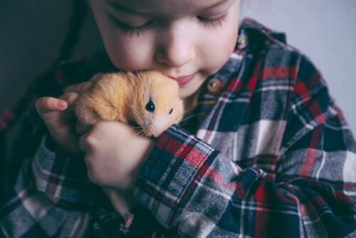 Hámster con un niño
