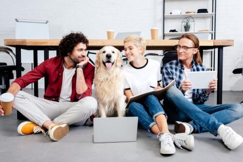 ¿Las mascotas en la oficina traen beneficios?