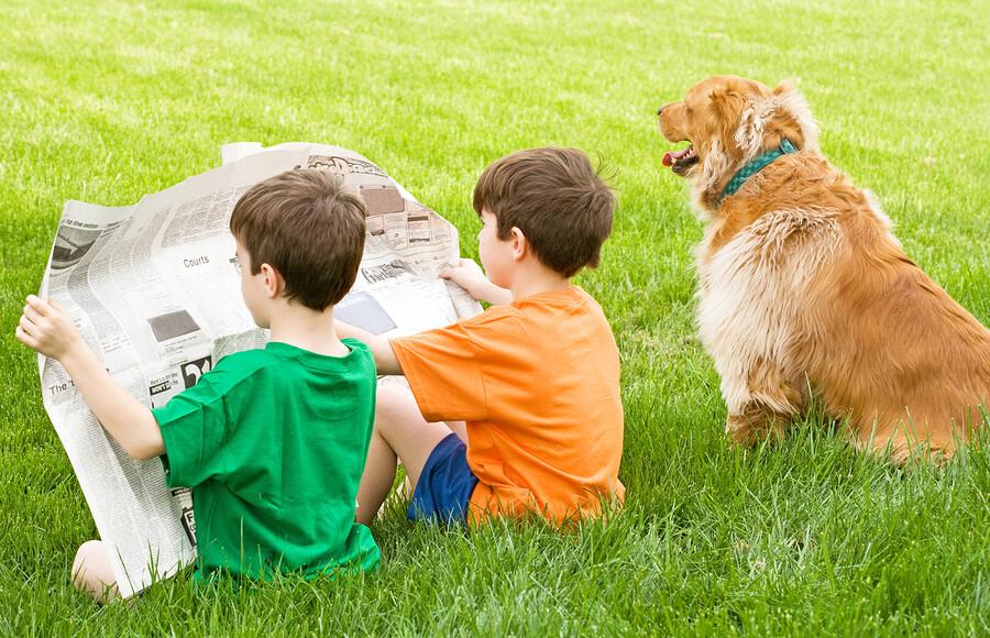 Las noticias de los animales despiertan curiosidad en los niños.