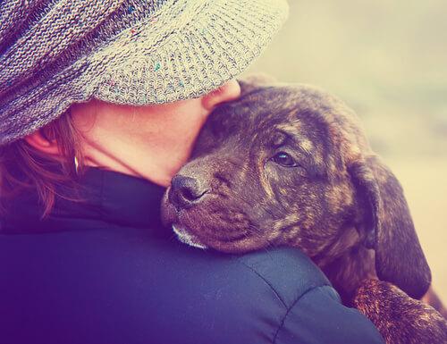 Perro huele cáncer