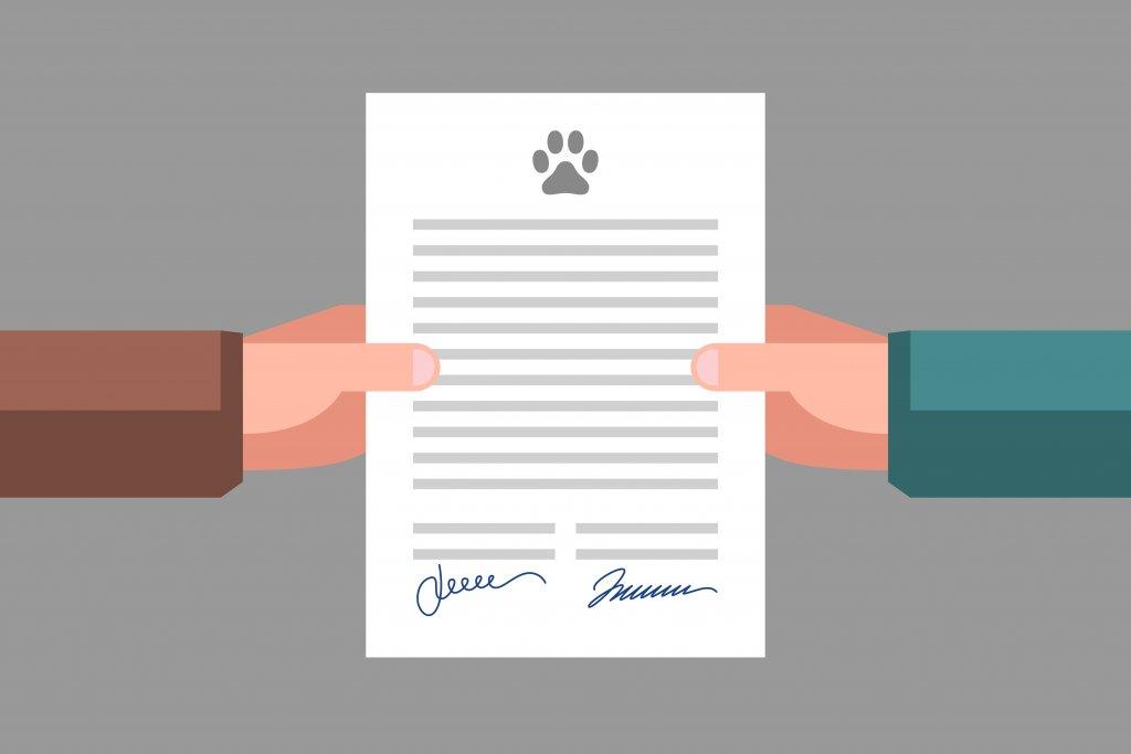 Documentación legal que tiene que tener todo dueño de una mascota