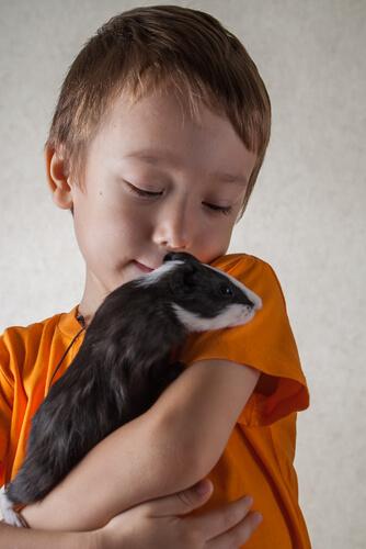Niño con conejillo de indias