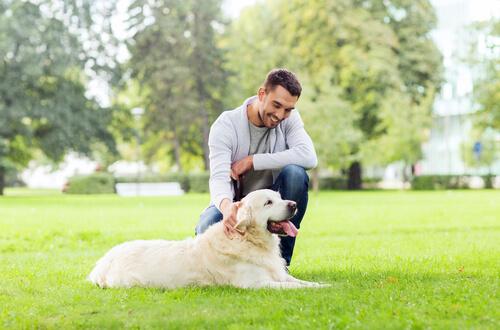¿Qué obligaciones tengo como propietario de un perro?