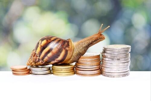 Imágenes de animales en monedas