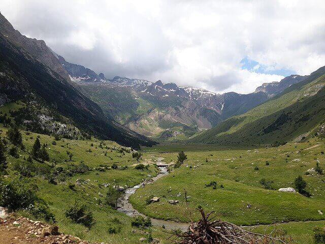 7 parques naturales de España para contemplar fauna autóctona