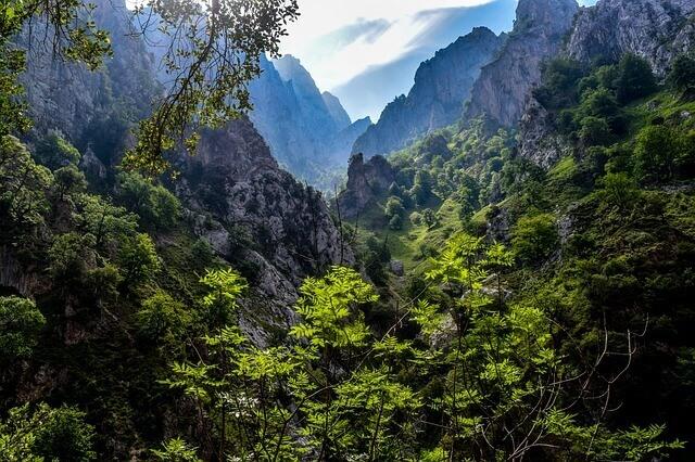 Protected natural areas: Picos de Europa