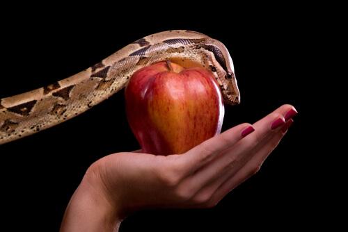 Representación de la serpiente y la manzana de Adán y Eva