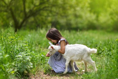 Niña y cabra