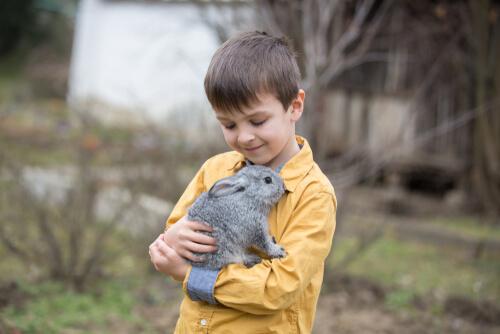 5 tips para ayudar a los niños que temen a los animales