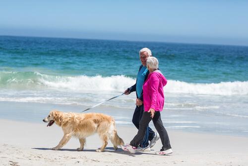 Paseando al perro por la playa