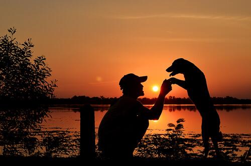 Perro y dueño en una puesta de sol