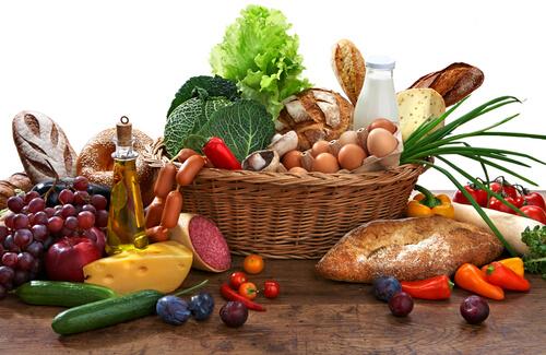Alimentos con nutrientes para cachorros