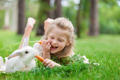 Dieta del conejo