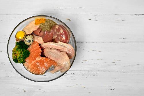 Dieta en perros con salmón
