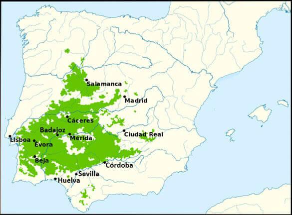 Distribución de la dehesa en España