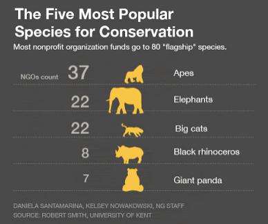 Las consideradas como especies bandera son son especies para conservar la biodiversidad
