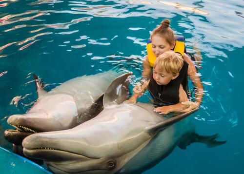 Terapia de niños con delfines