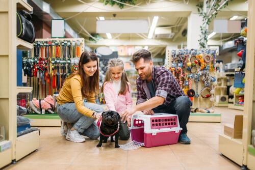 5 preguntas que debes hacerte antes de adoptar un perro