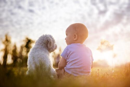 Bebé con perro pequeño sentados en el parque.