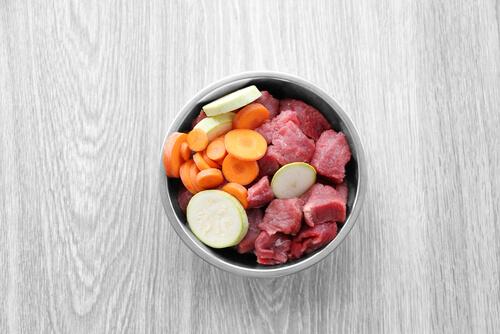 Carne y verdura en el plato del perro