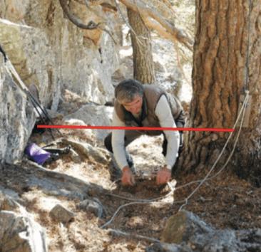 El lazo es un método de captura de animales silvestres
